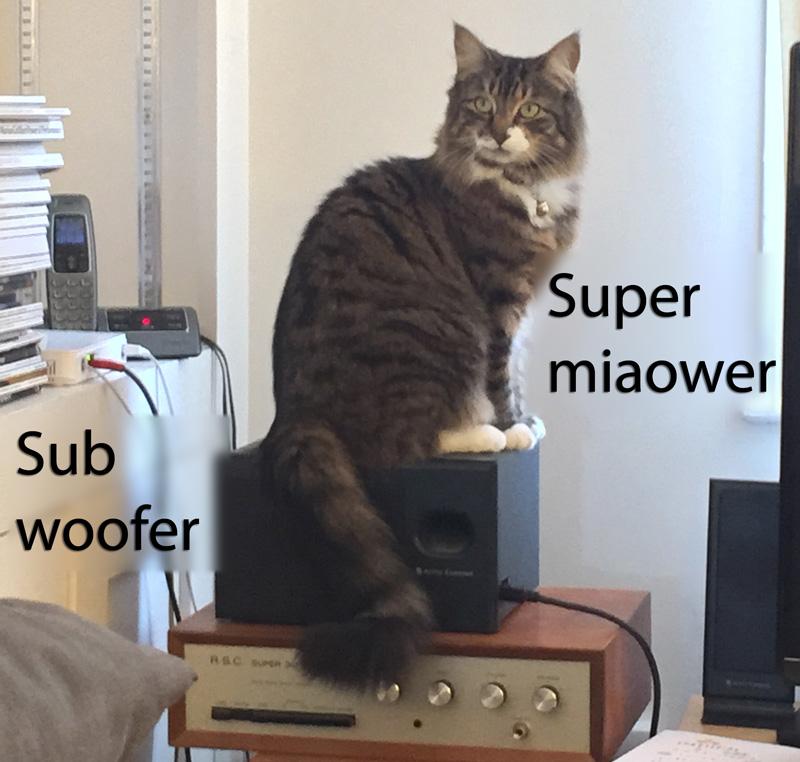 super_miaower
